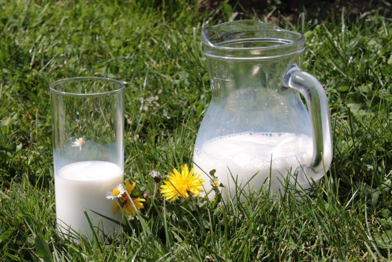 Patxi Koop leche Kaiku Euskal Herria Esnea